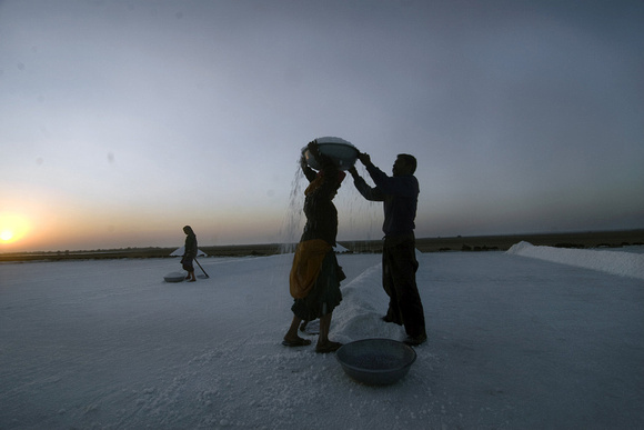 Farmers prefer to start an early day when the temperature in the Rann is pleasant. The mercury soars up to 40 degrees celcius even in December